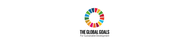 What are the global goals?